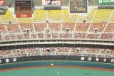 Outfield at Veteran's Stadium, Philadelphia, Pennsylvania Photographic Print