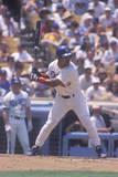 Professional Baseball Player at Bat, Dodger Stadium, Los Angeles, CA Photographic Print
