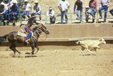 Calf Roping, Navajo Rodeo, AZ Photographic Print