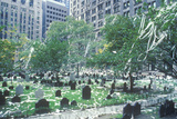 Trinity Church Cemetery after Ticker Tape Parade, New York City, New York Photographic Print