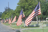American Flags, Los Angeles National Cemetery, California Photographic Print