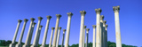 The Capitol Columns of the United States National Arboretum Once Supported the Us Capitol Photographic Print