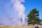 This Is the Famous Old Faithful Geyser. the Geyser Is Erupting at Sunrise Photographic Print