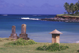 A Buddhist Cemetery in Maui Hawaii Photographic Print