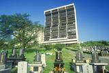 Buddhist Grave in Honolulu Hawaii Photographic Print