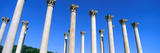The First Capitol Columns of the United States at the National Arboretum, Washington D.C. Photographic Print