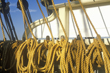 The Pilgrim Tall Ship Docked at the Marina Del Ray in Los Angeles, CA Photographic Print