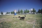 Dog and Man Practicing at CAnine Frisbee Contest, Westwood, Los Angeles, CA Photographic Print