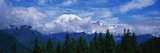 This Is Mt. Rainier Surrounded by Evergreen Trees Below It Photographic Print