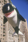 Willy the Orca Balloon in Macy's Thanksgiving Day Parade, New York City, New York Photographic Print