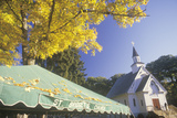 St. Bridget's Church in Northwest Connecticut Photographic Print