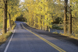 A Two Lane Road Crosses the New York-Vermont Border Surrounded by Autumn Trees Photographic Print