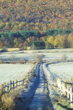 A Dirt Road with Morning Autumn Frost in Tyringham, Massachusetts Photographic Print
