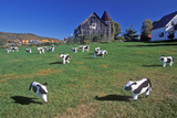 Cattle Statuary Grazing on Lawn, Woodstock, VT Photographic Print