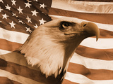 Photo Montage: Sepia Tone American Bald Eagle and American Flag Photographic Print