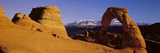 Delicate Arch, Arches National Park, Moab, Utah Photographic Print