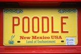 Vanity License Plate - New Mexico Photographic Print