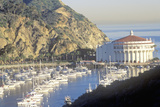 Casino Building and Avalon Harbor, Avalon, Catalina Island, California Photographic Print