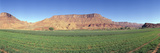 Irrigated Field, Colorado River and Red Rock Along Route 28, Utah Photographic Print