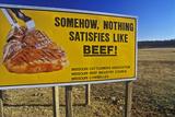 Freeway Billboard Promoting Beef, Ozarks, MO Fotografická reprodukce
