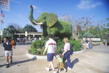 Tourists Entering the San Diego Zoo, Ca, with Elephant Topiary Lámina fotográfica