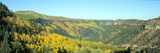 Aspens in Autumn Near Cortez, Colorado Photographic Print