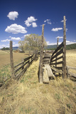 Old Cattle Loading Gate, Mn Photographic Print