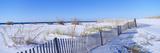 Sea Oats and Fence Along White Sand Beach at Santa Rosa Island Near Pensacola, Florida Photographic Print