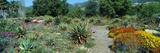 Gardens in Spring, Ojai Center for Earth Concerns, Ojai, California Photographic Print