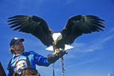 American Bald Eagle with Keeper, Pigeon Fork, Tn Photographic Print