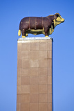 A Hereford Monument Stands in Kansas City, Missouri, known as the Beef Capital Photographic Print