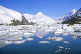 Portage Glacier and Portage Lake as Seen from Seward Highway, Alaska Photographic Print