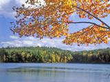 Walden Pond, Massachusetts Photographie