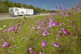 Pink and Purple Flowers Blooming Along Interstate Highway as Trailer Drives By Photographic Print
