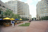 Reston, Va Town Center with Pedestrians Photographic Print