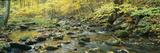 Macedonia Brook State Park, Connecticut Fotodruck