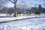 Horse Carriage Ride in Central Park, Manhattan, New York City, Ny after Winter Snowstorm Photographic Print