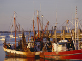 Fishing Boats and Docks at Provincetown, Cape Cod, Massachusetts Lámina fotográfica