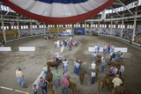 Cattle Contest with American Flag at Iowa State Fair, Des Moines, Iowa, August, 2007 Photographic Print