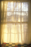 Sheer Curtains Through Paned Window Photographic Print