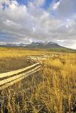 Last Dollar Ranch Road, Ridgeway, Colorado Fotodruck