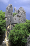 The Stone Forest Near Kunming, People's Republic of China Photographic Print