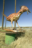 Roadside Bird Made Out of Scrap Metal Along Route 54 in Southern New Mexico Photographic Print