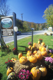 Pumpkins and Autumn Flower Arrangement Along Scenic Route 100, VT Photographic Print