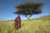 Masai Warrior in Senior Elder Robe Standing Near Acacia Tree in Lewa Conservancy, Kenya Africa Photographic Print