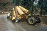 Logging Truck Accidental Log Spill, Kunming, Yunnan Province, People's Republic of China Photographic Print
