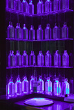 Multiple Gin Bottles in Purple Light Decorate Shelves in Bar in Barcelona, Spain Photographic Print