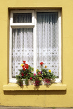 Yellow Cottage Window with Flowers on Sill, Eyeries Village, West Cork, Ireland Photographic Print