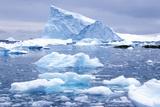 Icebergs in Paradise Harbor, Antarctica Photographic Print