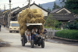 Tractor Hauling Hay in Dali, Yunnan Province, People's Republic of China Fotografisk tryk